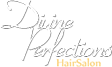 Divine Perfections Logo
